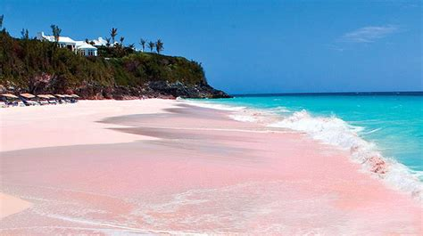 10 Of The Prettiest Pink Beaches From All Over The World