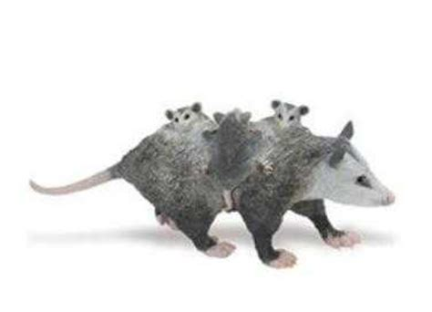 Opossum Toy Miniature Adult with Babies at Animal World®