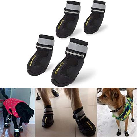 Best Dog Boots That Stay On - Dog Instructor